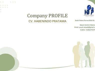 company profile 1