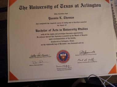 Bachelor of Arts in University Studies