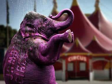 Elephant Photomanip