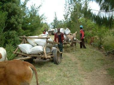 Web site on a farm in Kenya, Africa