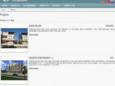 Website for Real Estate company in Turkey