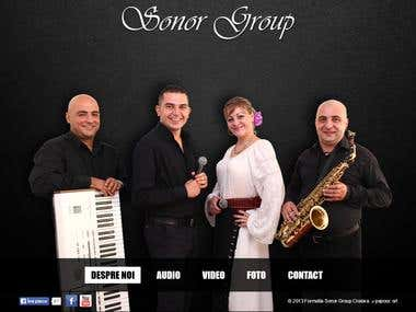 Custom WordPress template for Sonor Group