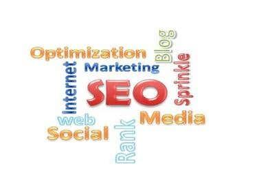 Best search engine optimization