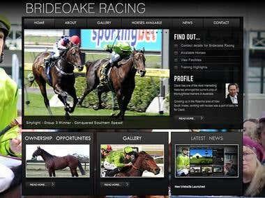 Example of Racing Website