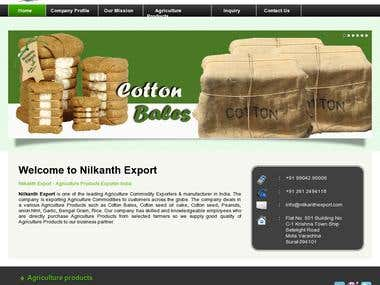 Nilkanth Export - WebSite Design and SEO