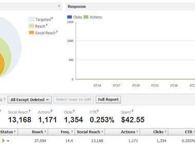 Facebook Ads campaign result - example 1