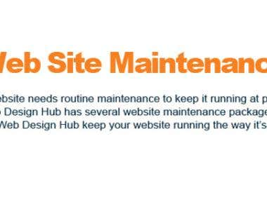 All kind of Website Errors and Site Maintenance will be Done