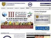 Webpage Ciu Curacao
