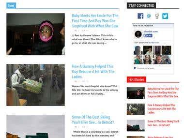 WordPress - bluntbit.com