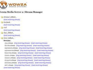 Wowza Media Server 2 & 3