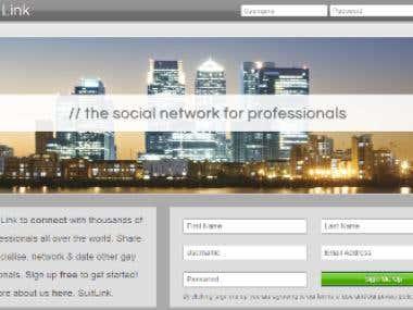 Professionals Social Network Design