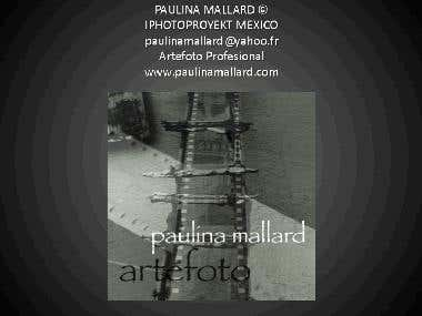 Paulina Mallard PORTFOLIO