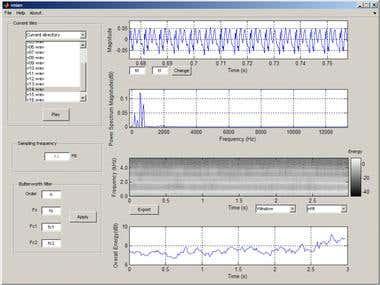 Digital Signal Processing: voice signals