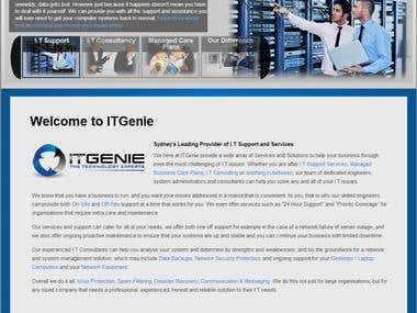 "I.T Genie ""Home"" page"