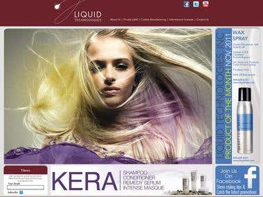 Web Page Mock Up For Liquid Technologies