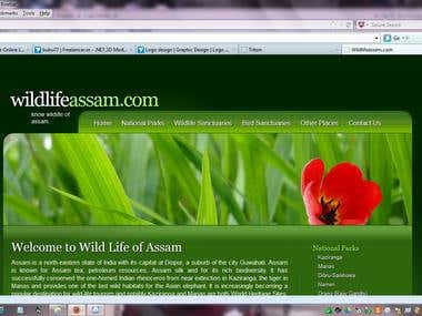Website design - Wildlifeassam.com
