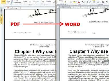 PDF to WORD data conversion and processing