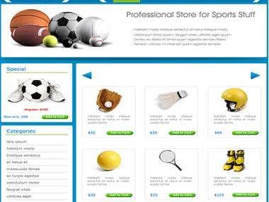 Web Design - Avid Sports
