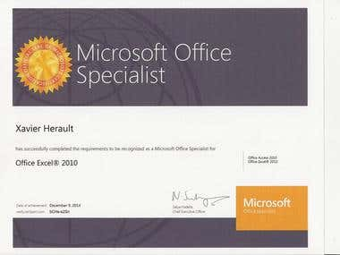 Microsoft Office Specialist, Excel 2010