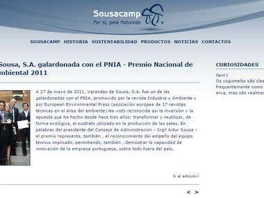 Translation of website (Portuguese to Spanish)