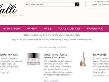 Maintenance work on Magento based shopping website