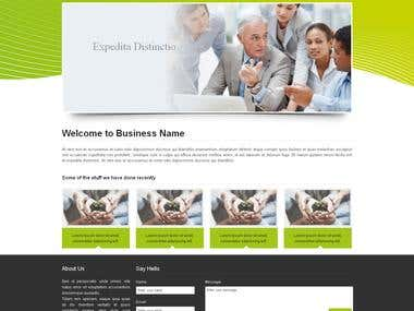 Responsive website design with wordpress integration