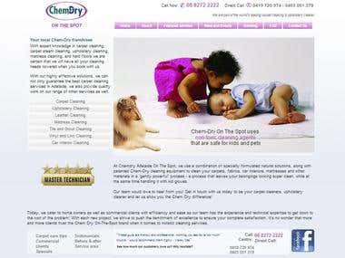 ChemDry Full Site Design