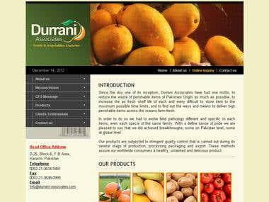 www.durrani-associates.com