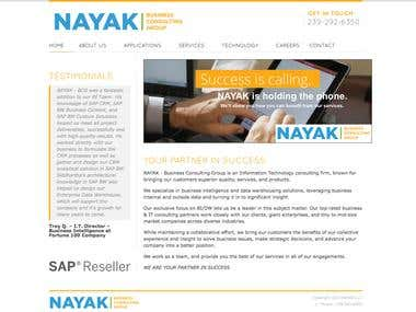 NAYAK - BCG Website