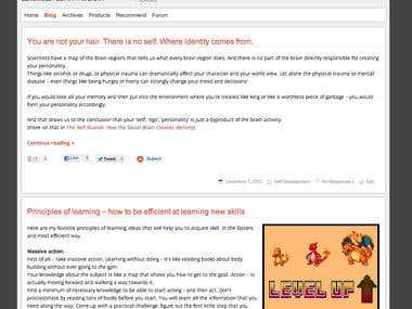 Wordpress Blog.