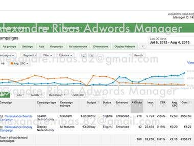 Adwords Optimization Work