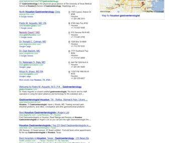 Complete SEO Campaign for GastroHouston.com