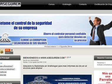 Website Asegurem.com