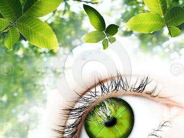 Green Vision-digital work