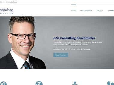 e-Se Consulting Bauchmülle