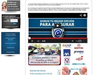 Website ALinkSeguros.com