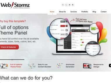 SEO & Web Development Company USA SEO