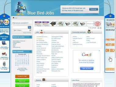 Blue Bird Jobs