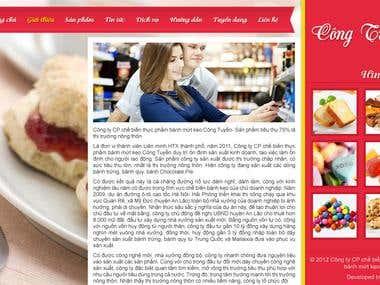 Intro Page Cong Tuyen Company