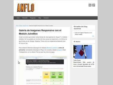 anflo.net
