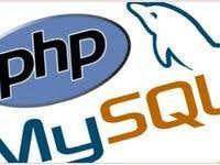 Wordpress Website (PHP/MySQL)
