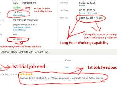 Odesk Long term earning and feedback