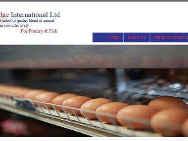 Ridge International Ltd