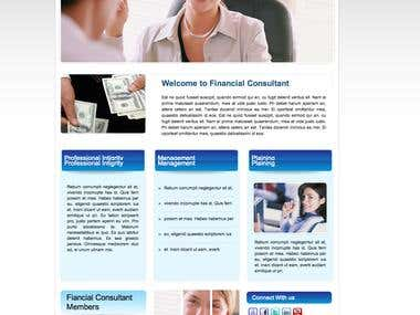 Full Wordpress Site for Financial Consultant