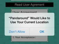 Pandaround
