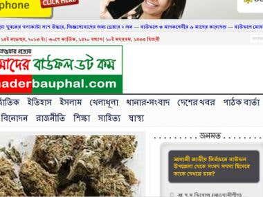 Online News Portal