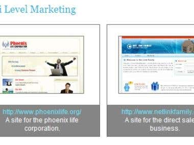 Direct Sale or Multi Level Management