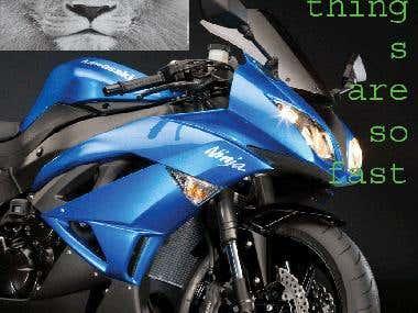 bike.and tiger
