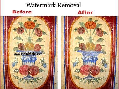 Watermark Removal