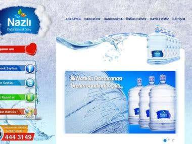 Nazli Su Website Design